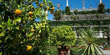 Borromeo gardens Isola Bella Lago Maggiore